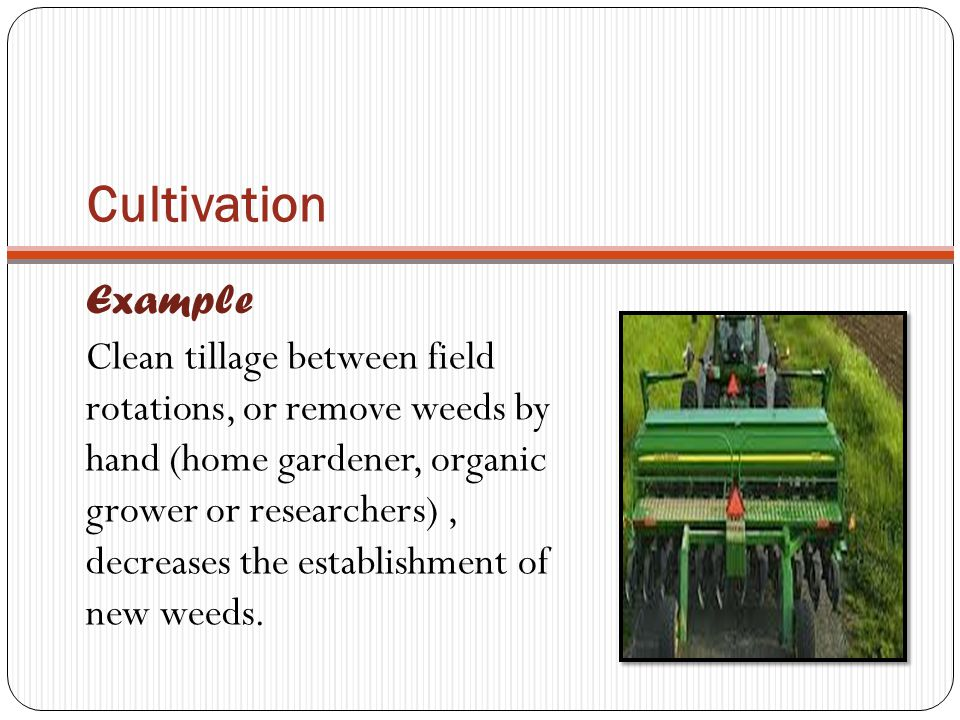 Cultivation Example.