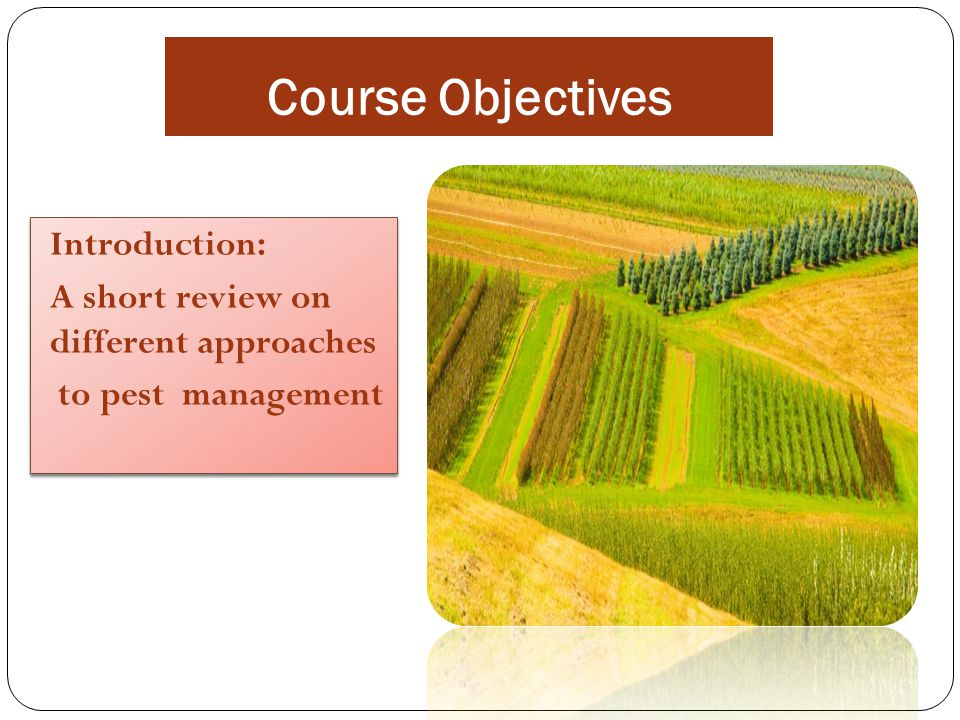 Course Objectives Introduction: A short review on different approaches