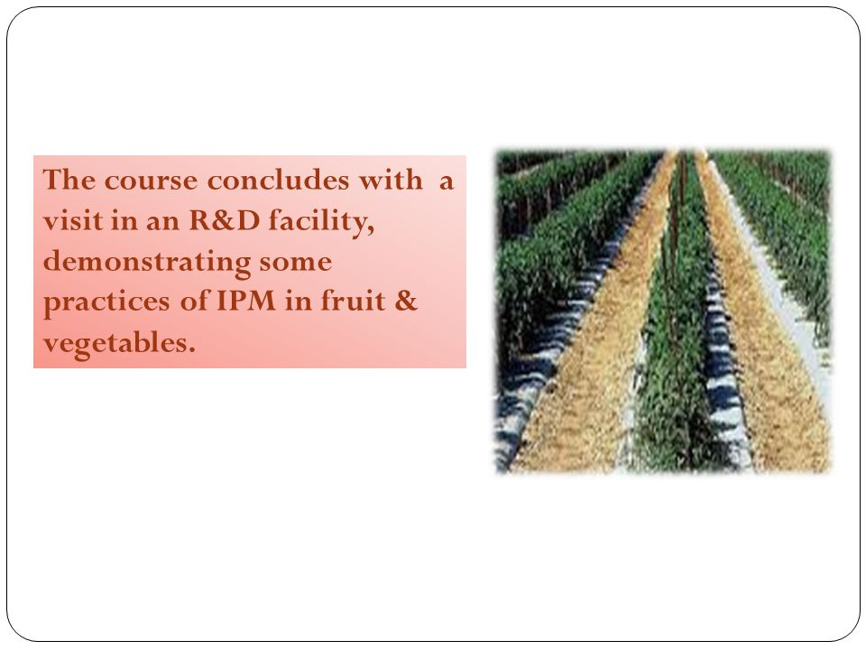 The course concludes with a visit in an R&D facility, demonstrating some practices of IPM in fruit & vegetables.