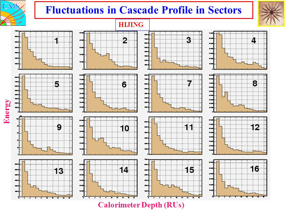Fluctuations in Cascade Profile in Sectors Calorimeter Depth (RUs)