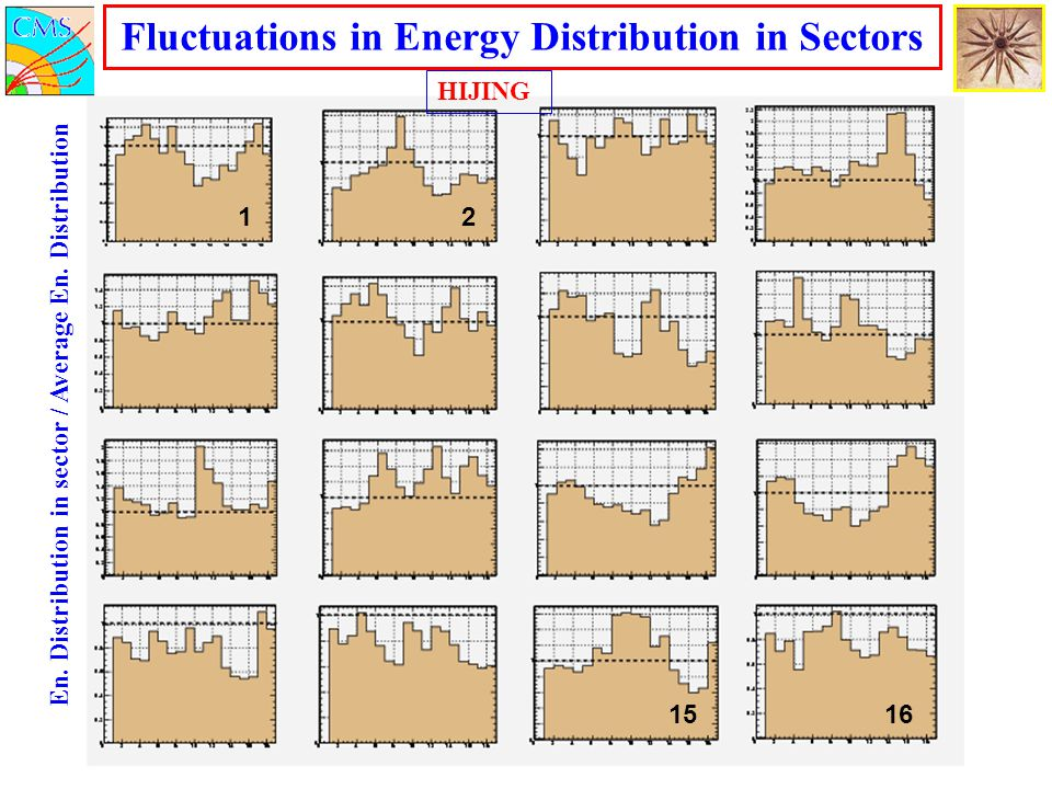 Fluctuations in Energy Distribution in Sectors