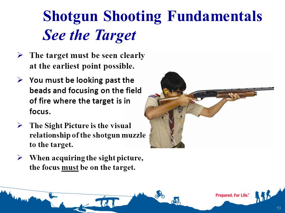 Shotgun Shooting Fundamentals See the Target