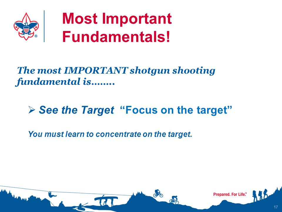 Most Important Fundamentals!