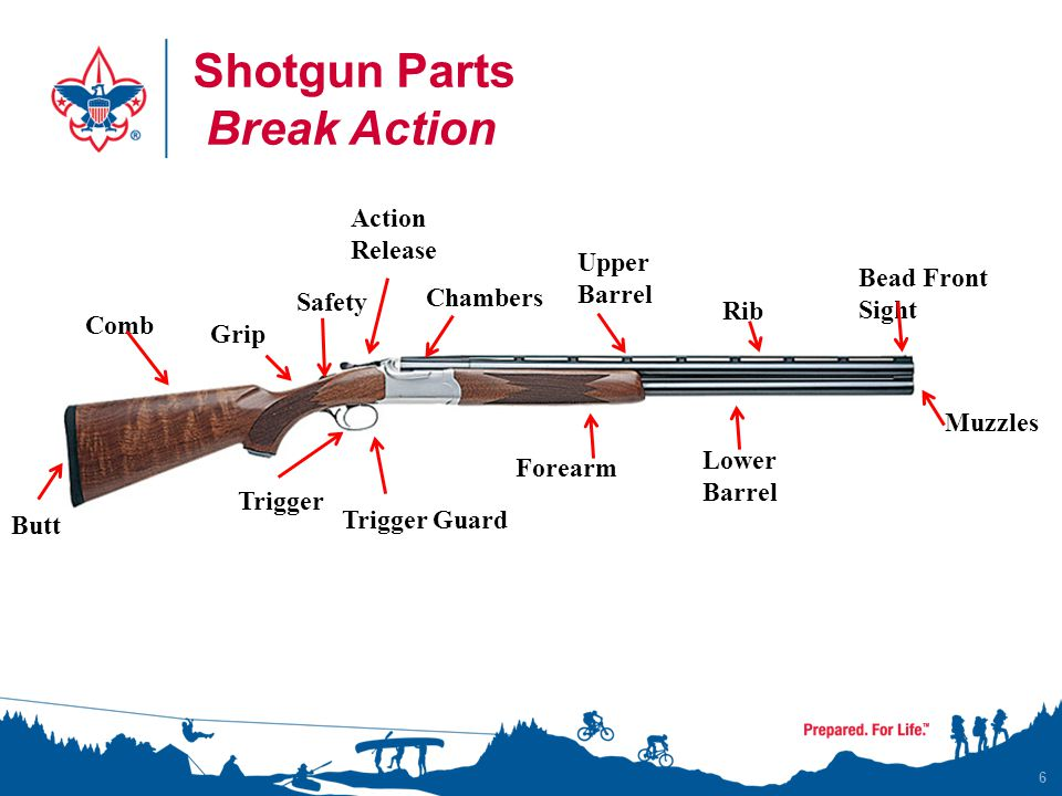 Shotgun Parts Break Action