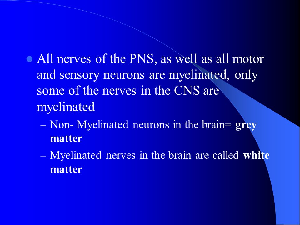 All nerves of the PNS, as well as all motor and sensory neurons are myelinated, only some of the nerves in the CNS are myelinated