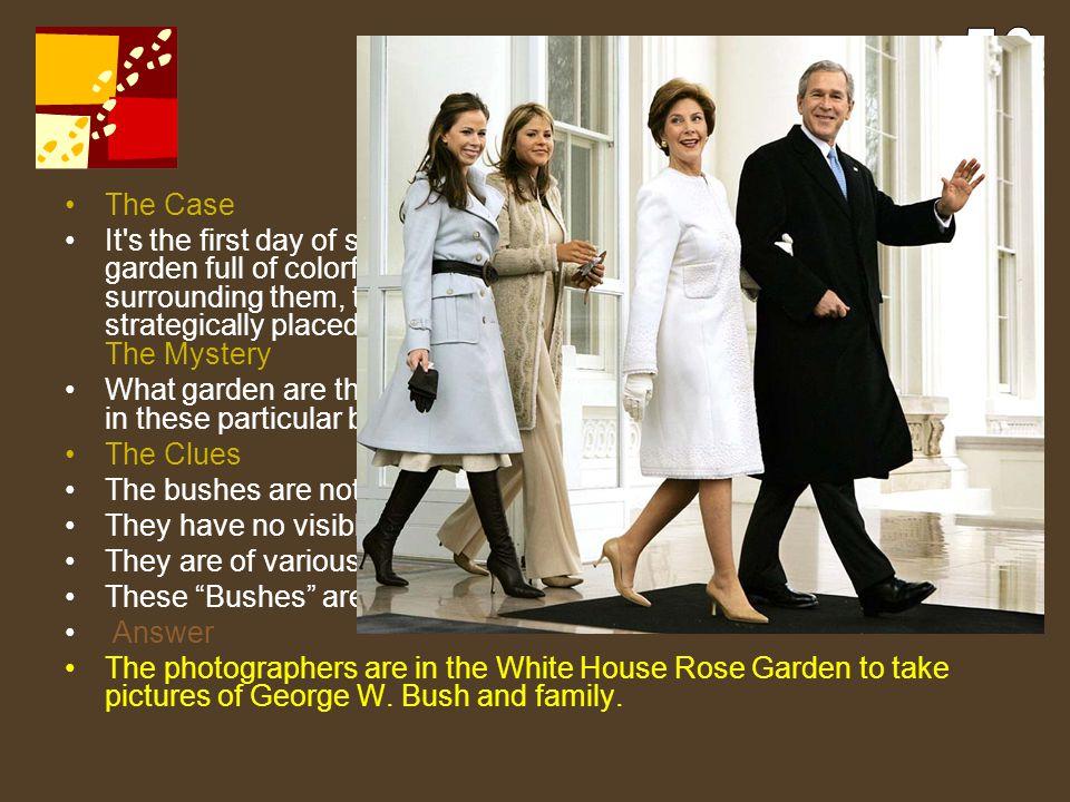 56 Bush Garden. The Case.
