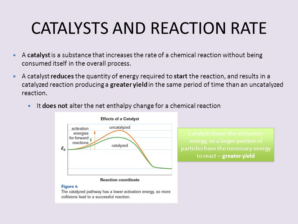 CATALYSTS AND REACTION RATE