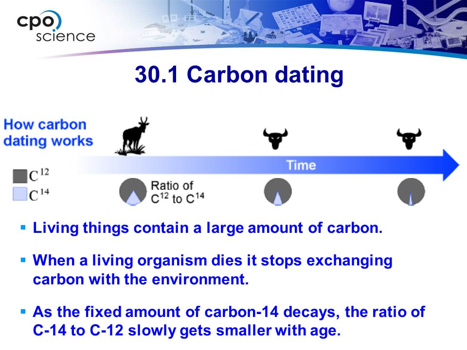 30.1 Carbon dating Living things contain a large amount of carbon.