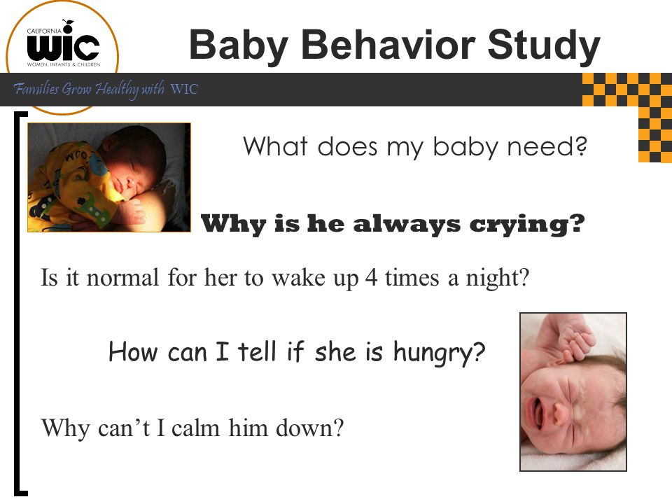 Baby Behavior Study What does my baby need Why is he always crying
