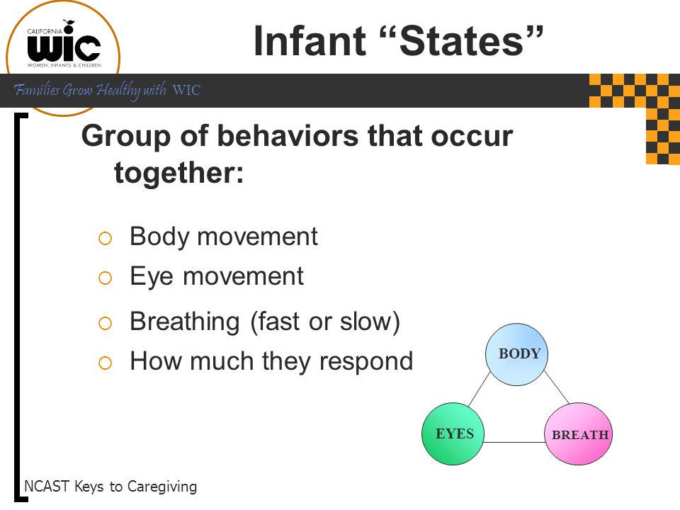 Infant States Group of behaviors that occur together: Body movement