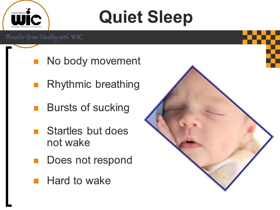 Quiet Sleep No body movement Rhythmic breathing Bursts of sucking
