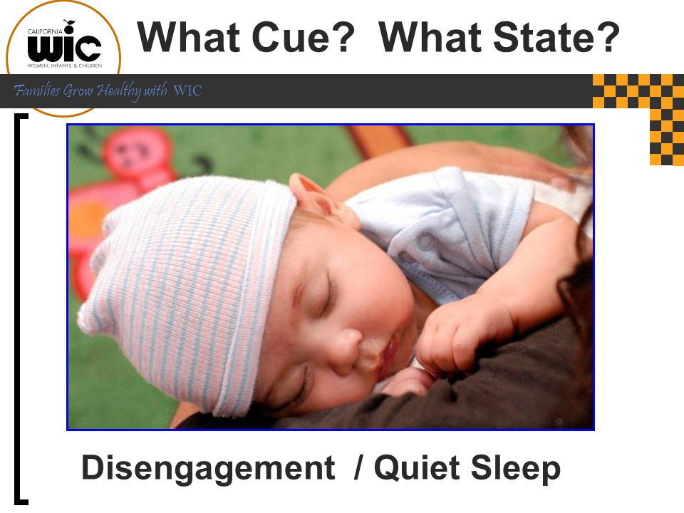 Disengagement / Quiet Sleep