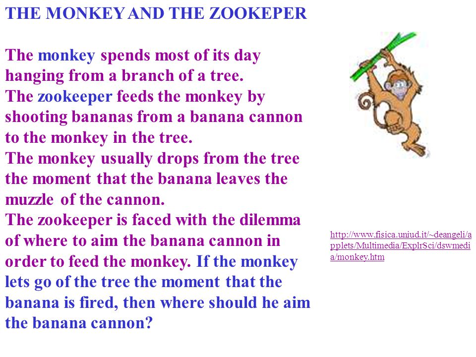 THE MONKEY AND THE ZOOKEPER