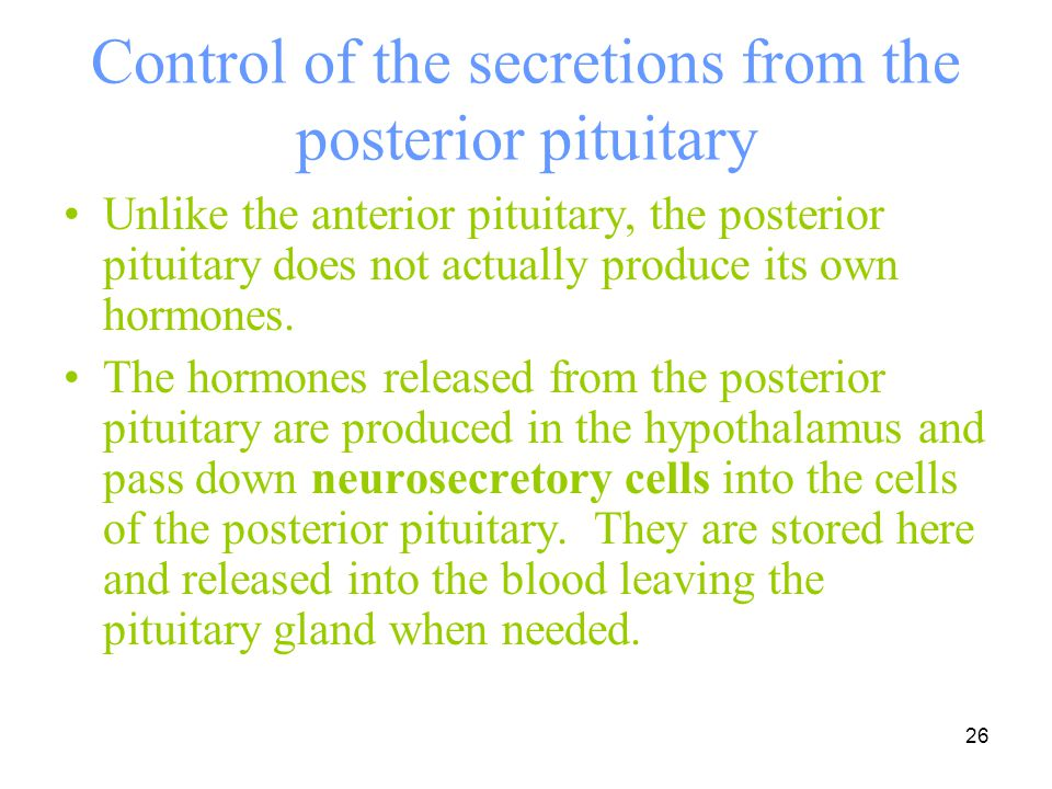 Control of the secretions from the posterior pituitary