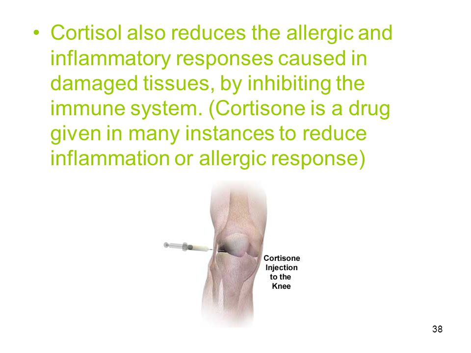 Cortisol also reduces the allergic and inflammatory responses caused in damaged tissues, by inhibiting the immune system.