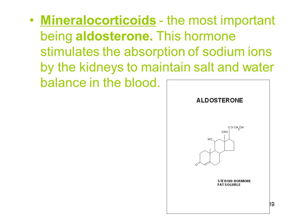 Mineralocorticoids - the most important being aldosterone
