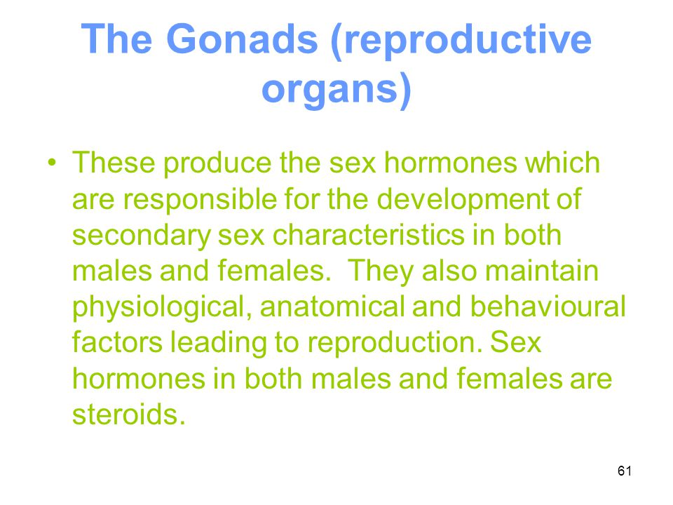 The Gonads (reproductive organs)