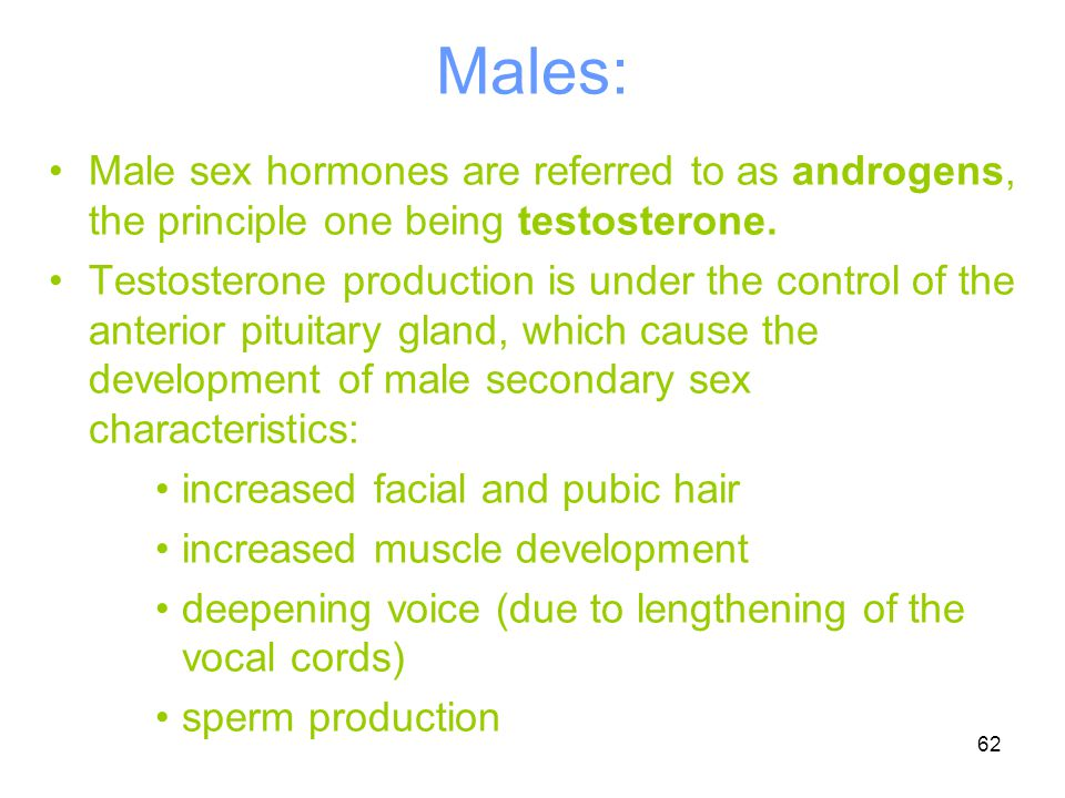 Males: Male sex hormones are referred to as androgens, the principle one being testosterone.