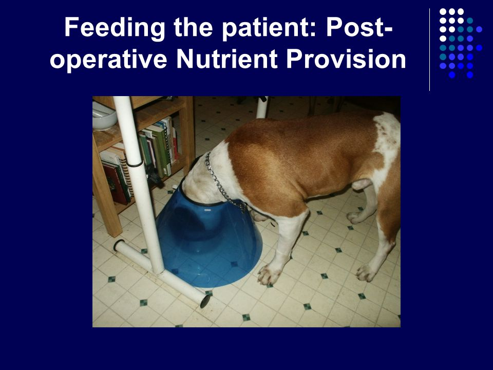 Feeding the patient: Post-operative Nutrient Provision