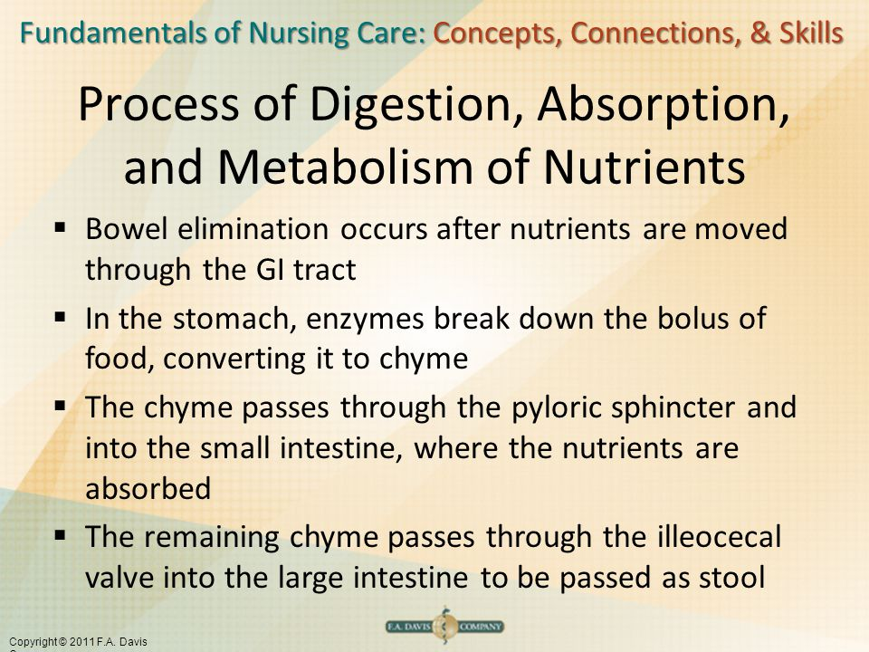 Process of Digestion, Absorption, and Metabolism of Nutrients
