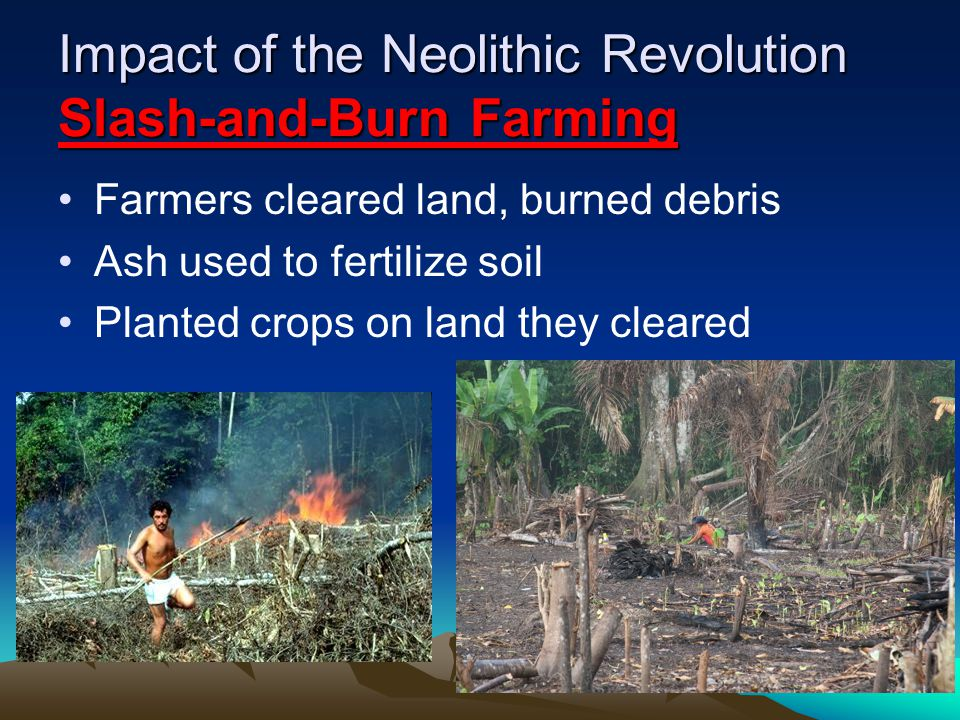 Impact of the Neolithic Revolution Slash-and-Burn Farming