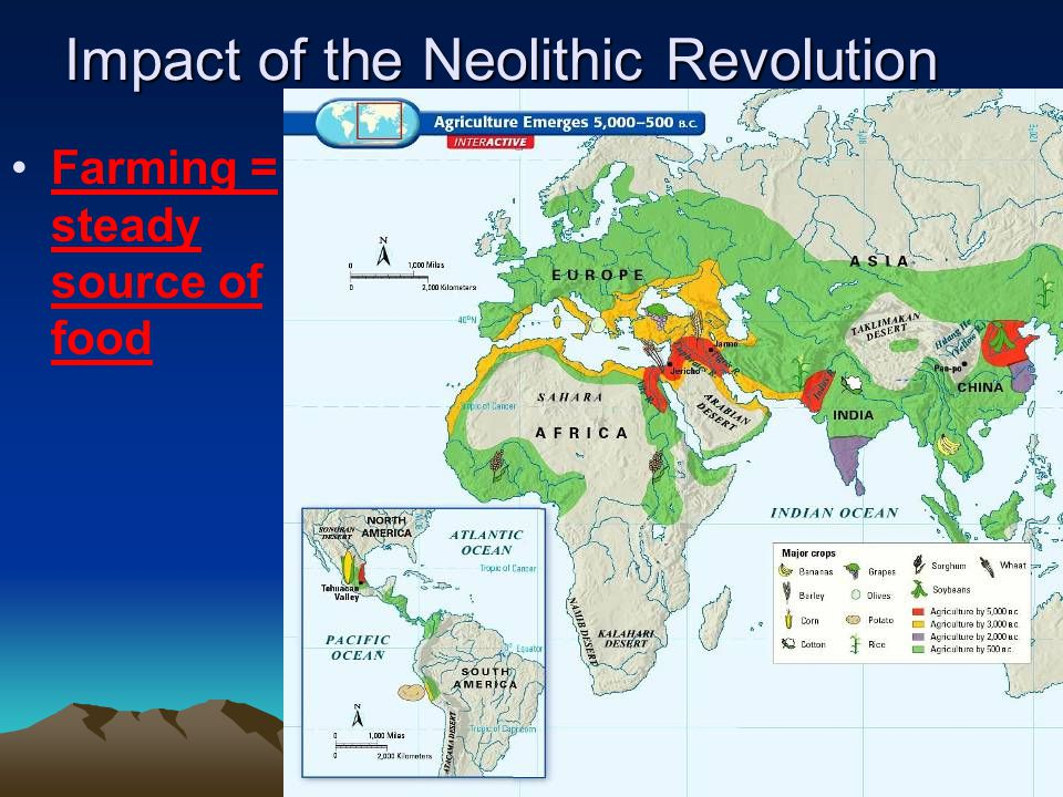 Impact of the Neolithic Revolution