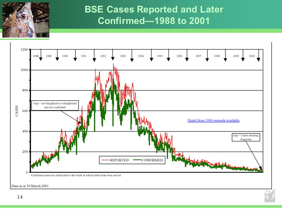 BSE Cases Reported and Later Confirmed—1988 to 2001