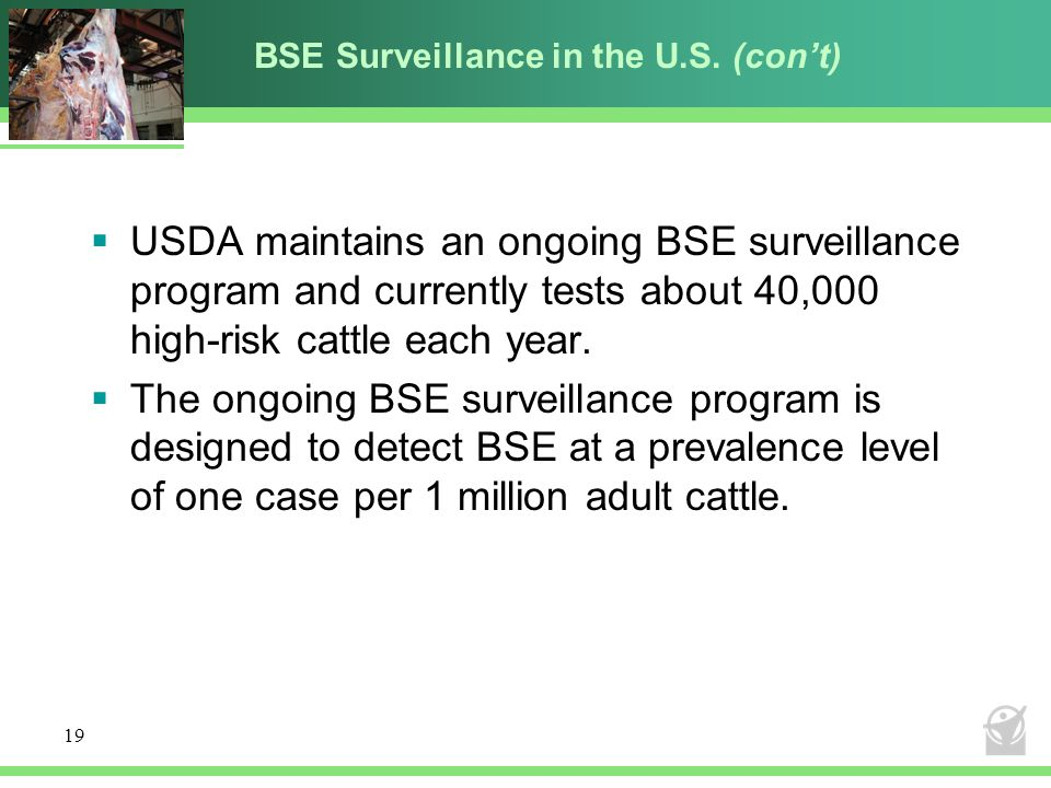 BSE Surveillance in the U.S. (con't)