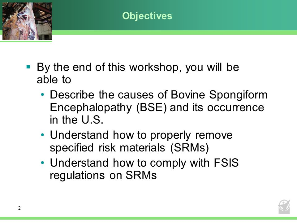 By the end of this workshop, you will be able to
