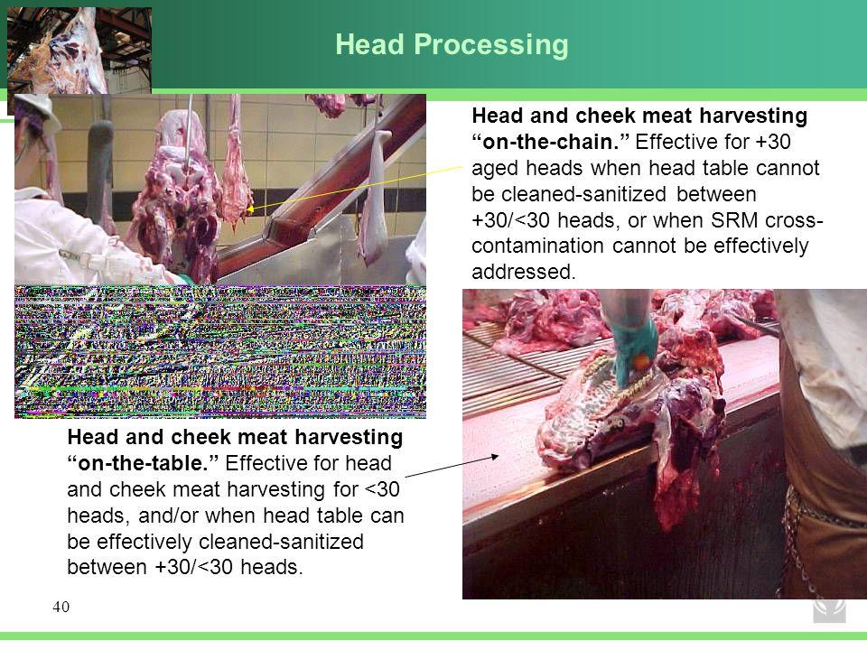 Head Processing