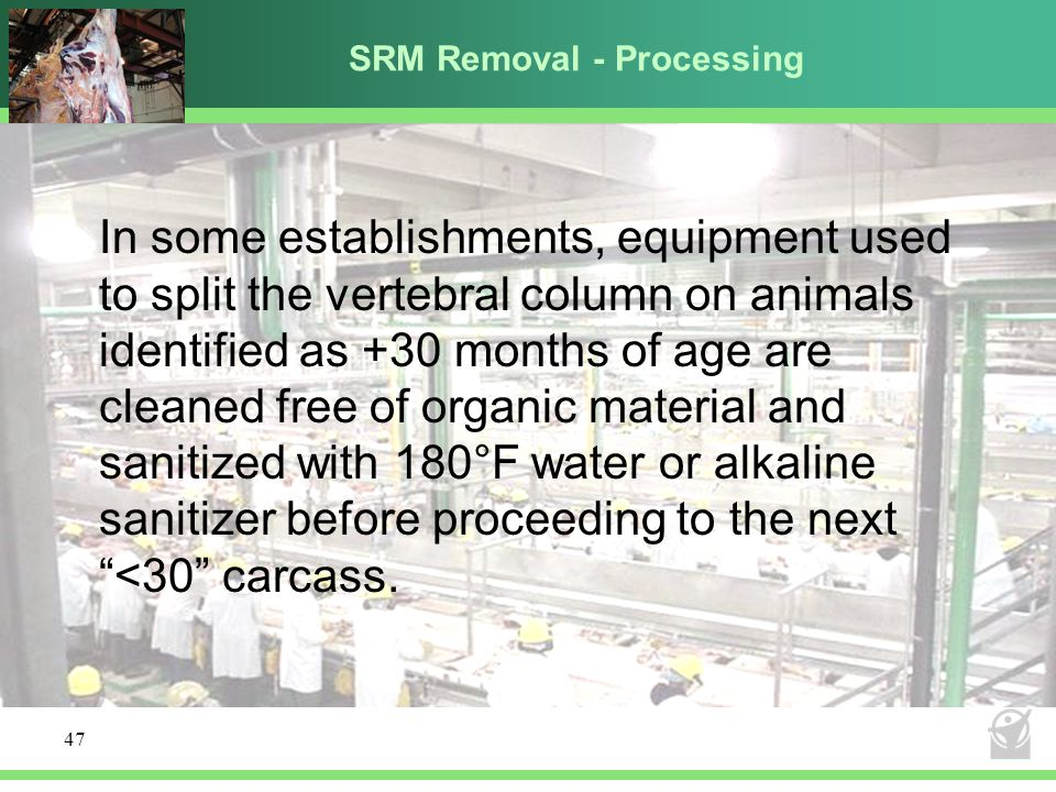 SRM Removal - Processing