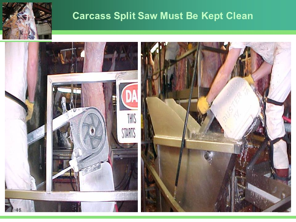 Carcass Split Saw Must Be Kept Clean