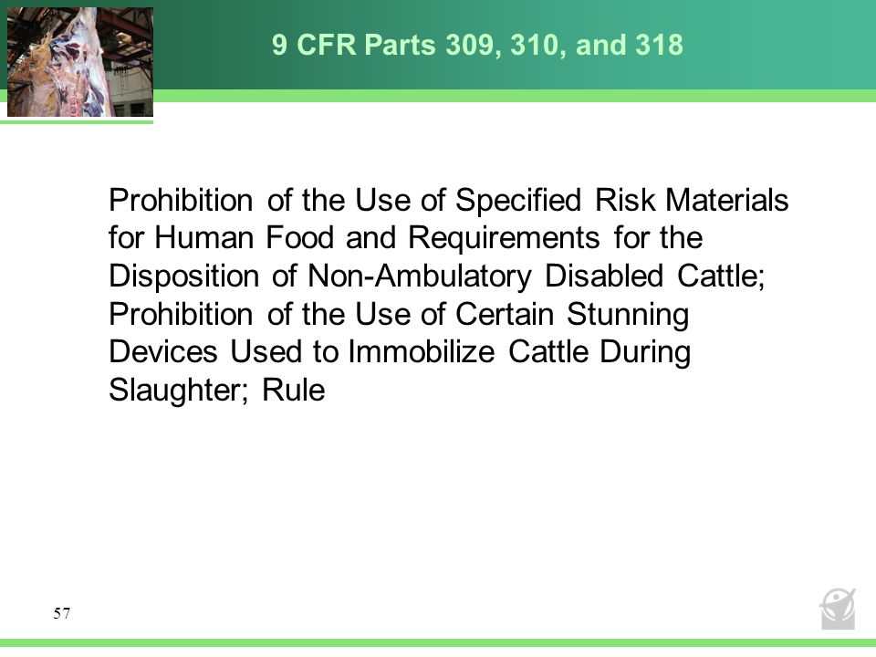 9 CFR Parts 309, 310, and 318