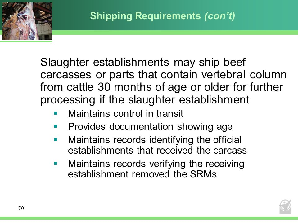 Shipping Requirements (con't)