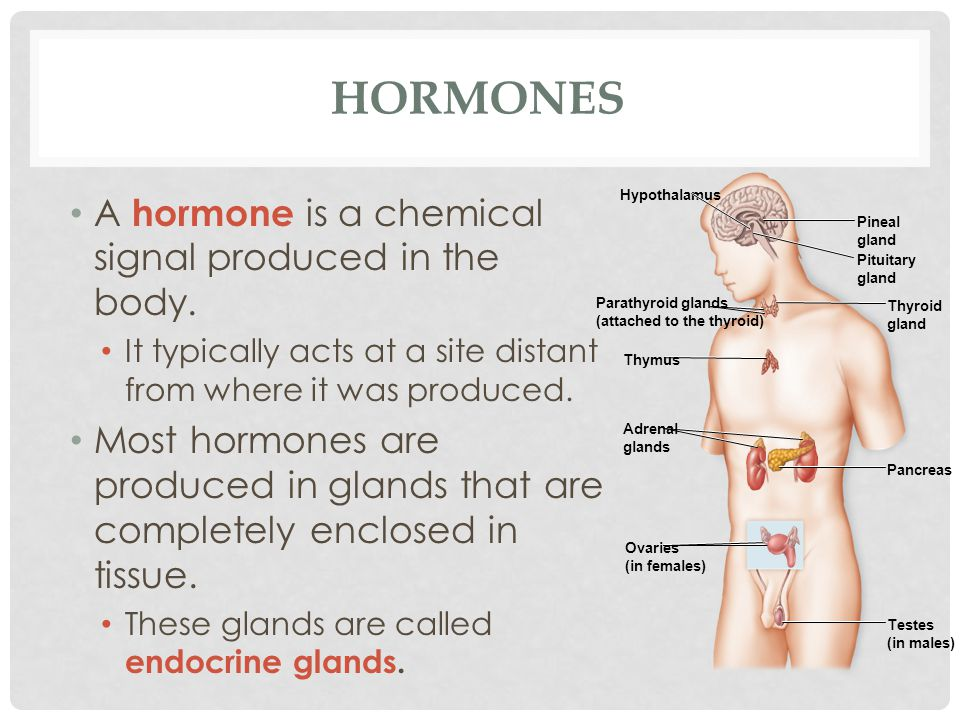 Hormones A hormone is a chemical signal produced in the body.