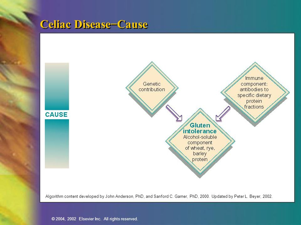 Celiac Disease−Cause Algorithm content developed by John Anderson, PhD, and Sanford C.