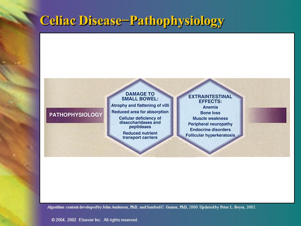 Celiac Disease−Pathophysiology