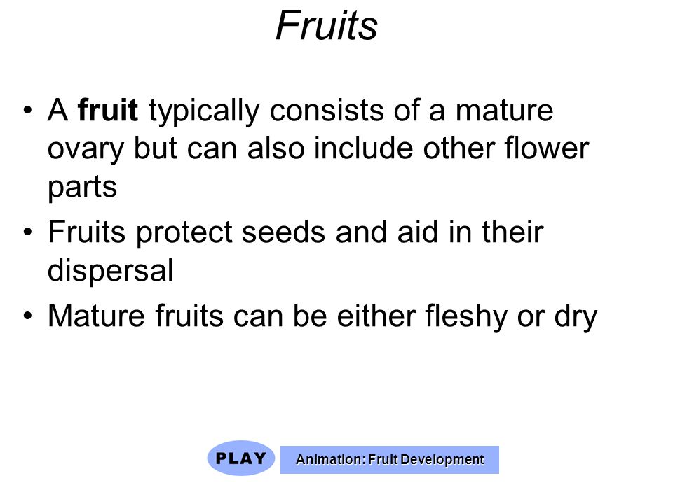 Animation: Fruit Development
