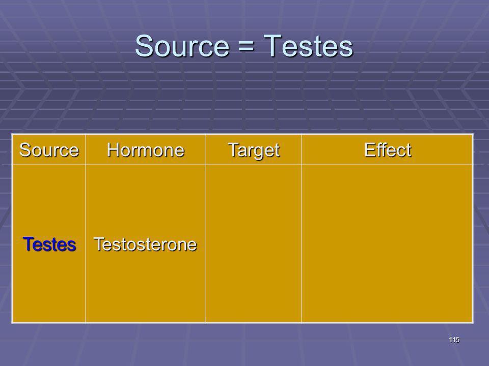 Source = Testes Source Hormone Target Effect Testes Testosterone