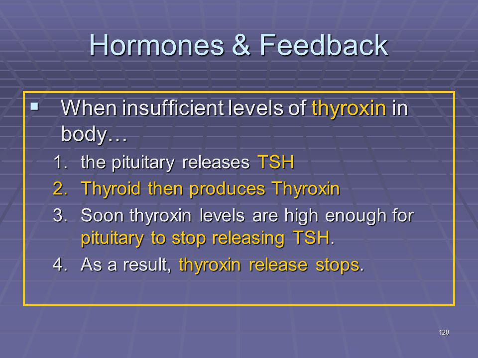 Hormones & Feedback When insufficient levels of thyroxin in body…
