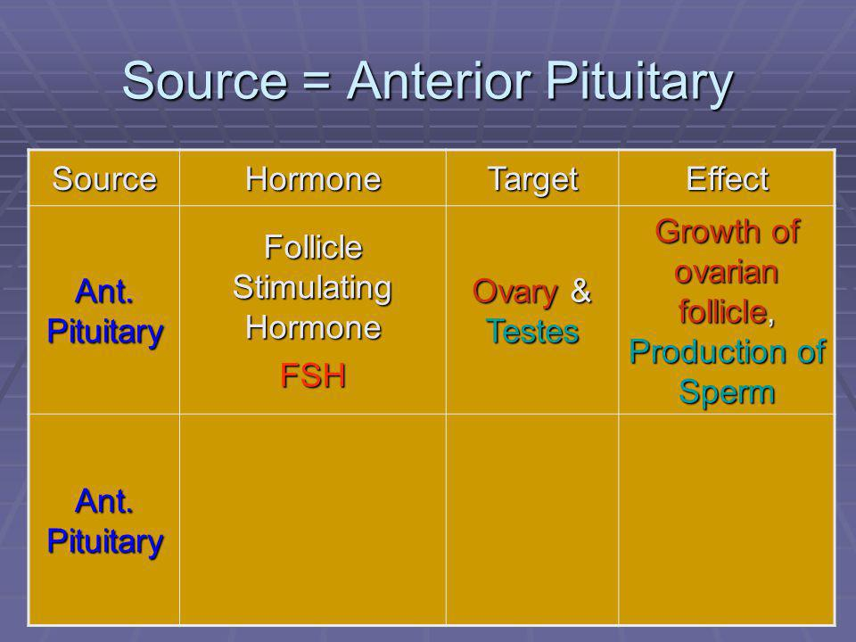 Source = Anterior Pituitary