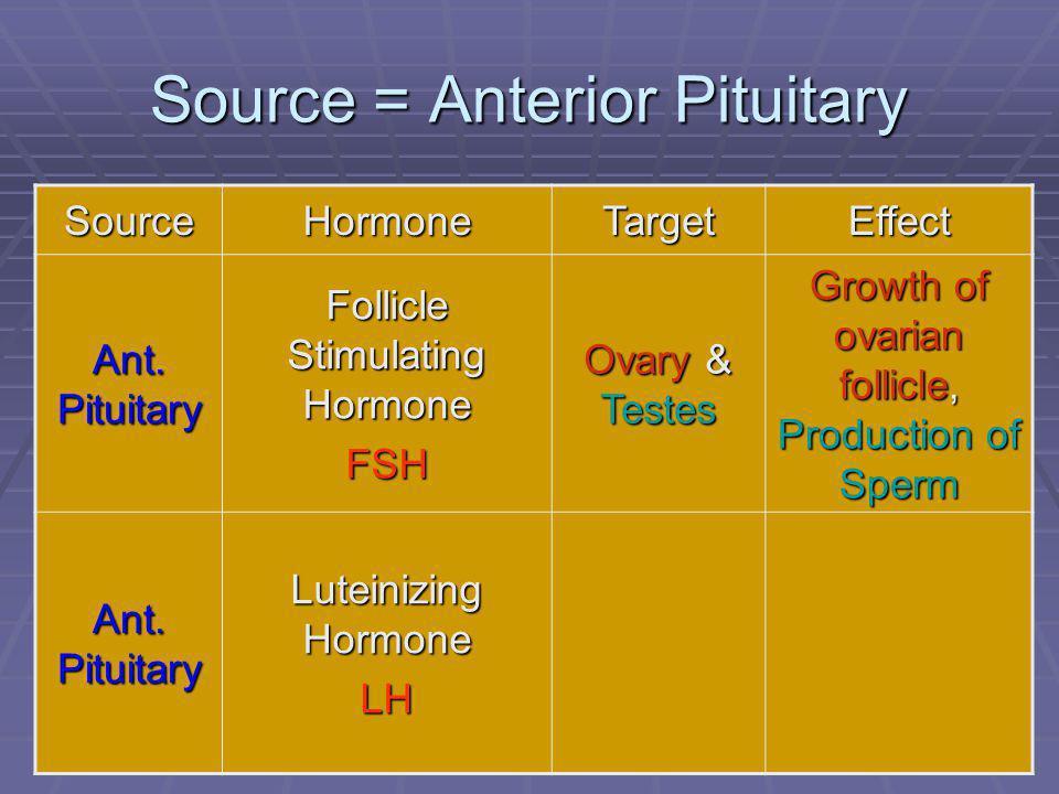 Source = Anterior Pituitary