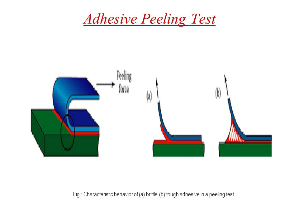 Adhesive Peeling Test Fig : Characteristic behavior of (a) brittle (b) tough adhesive in a peeling test.