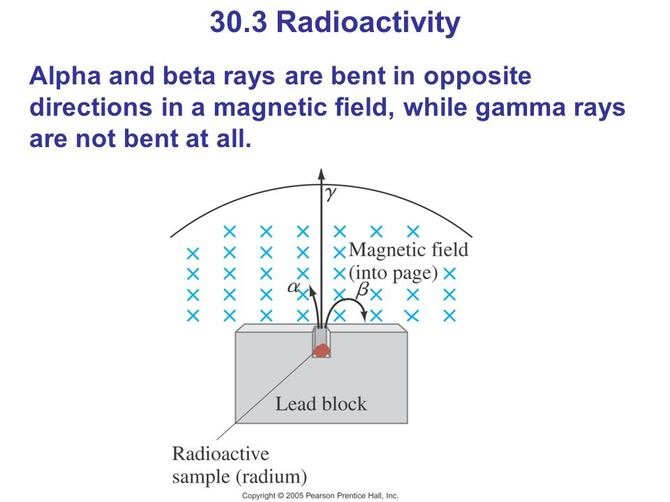 30.3 Radioactivity Alpha and beta rays are bent in opposite directions in a magnetic field, while gamma rays are not bent at all.