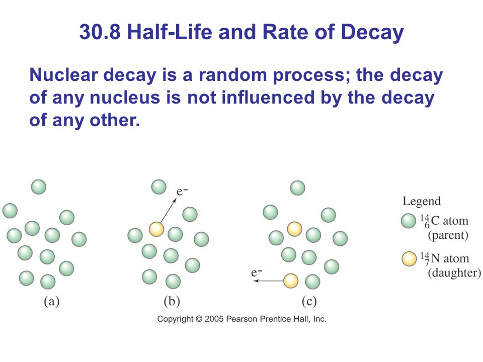 30.8 Half-Life and Rate of Decay