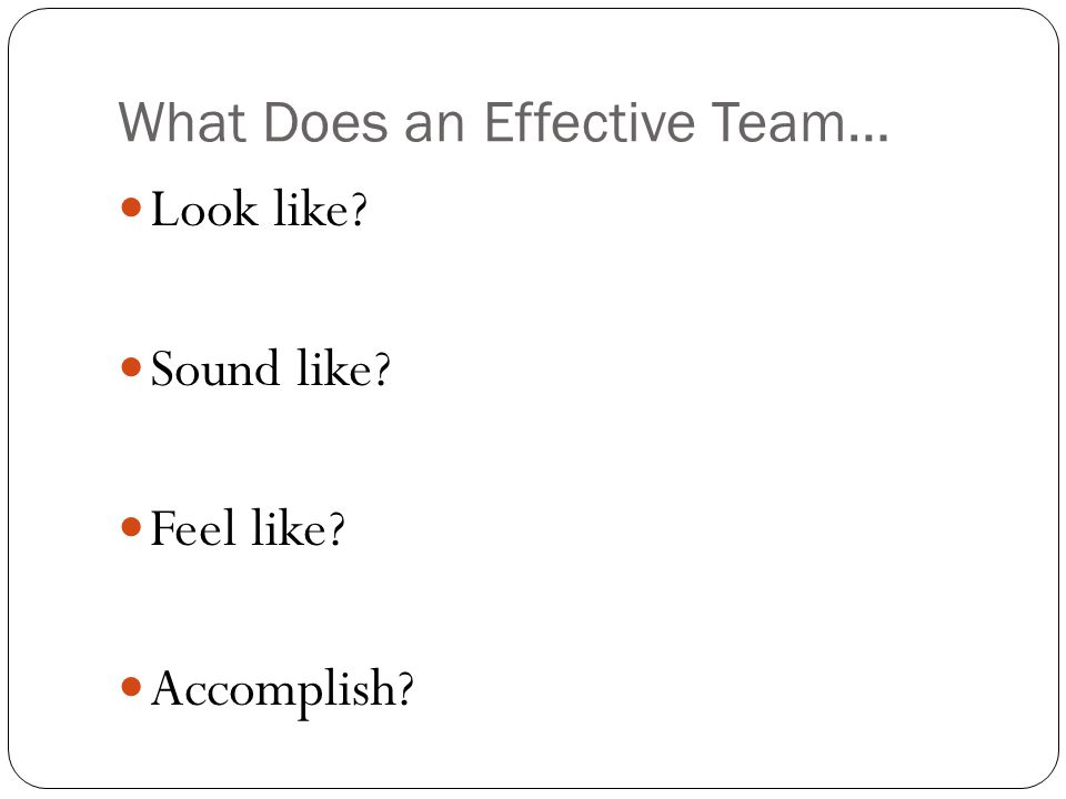 What Does an Effective Team…