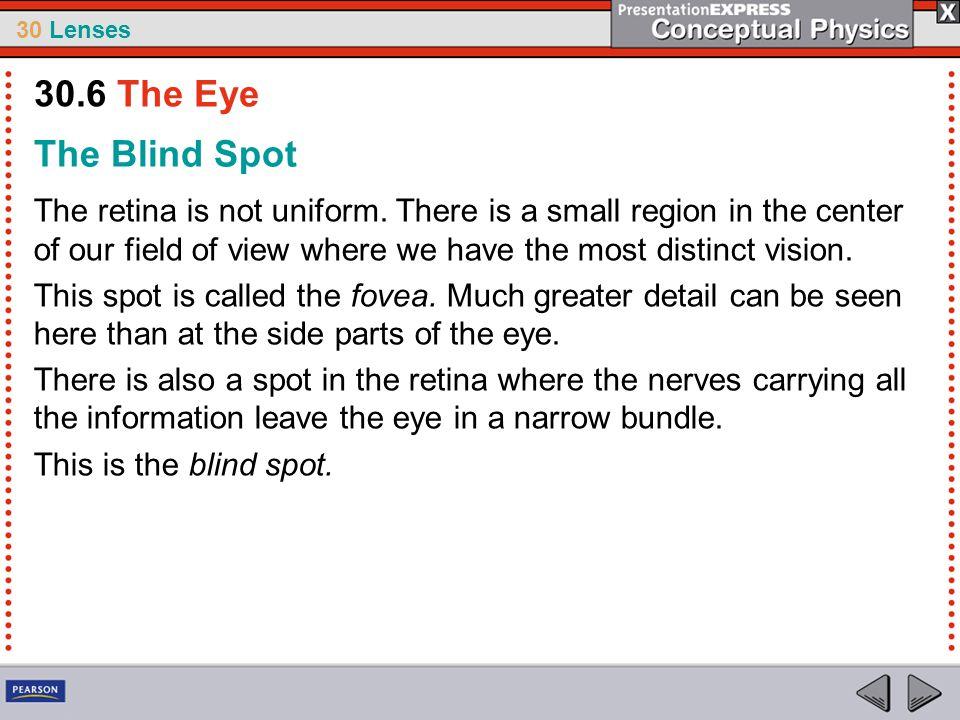 30.6 The Eye The Blind Spot.