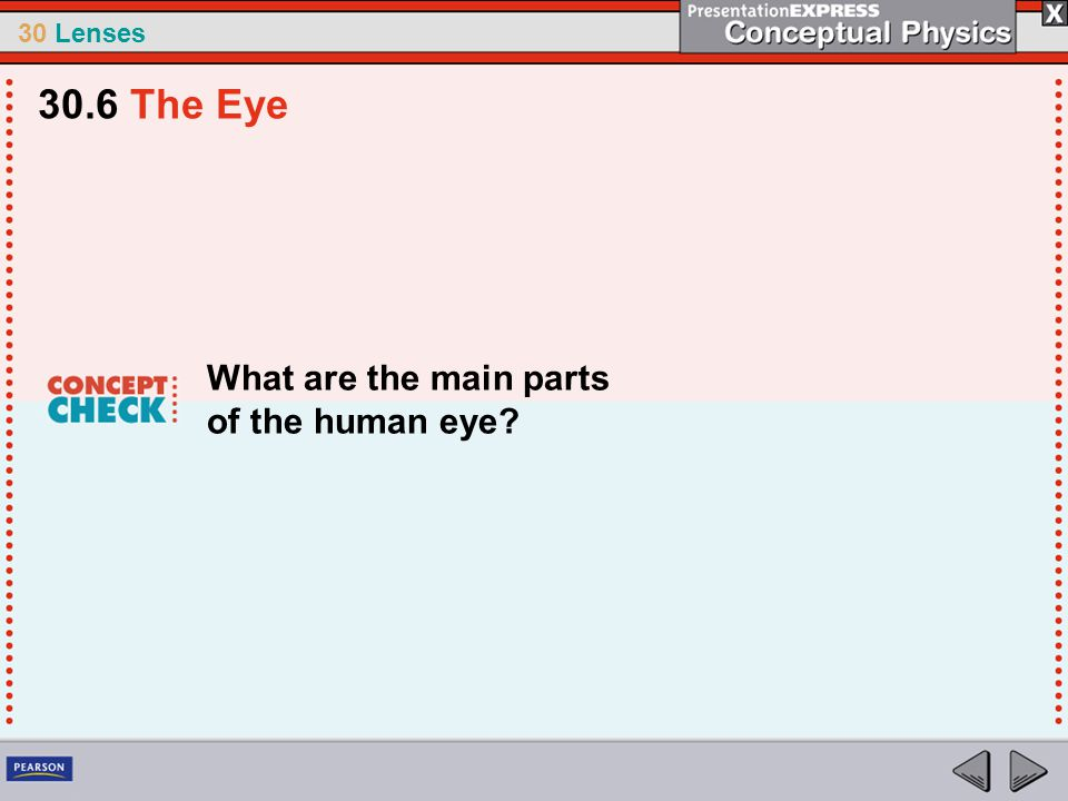 30.6 The Eye What are the main parts of the human eye