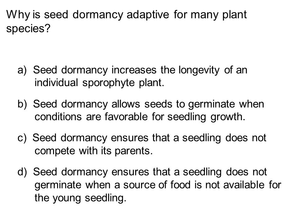 Why is seed dormancy adaptive for many plant species