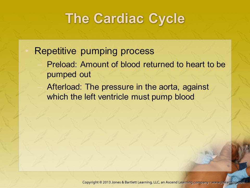 The Cardiac Cycle Repetitive pumping process